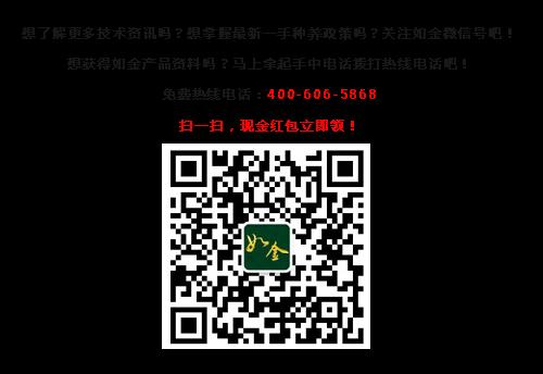 文底图片_副本.png