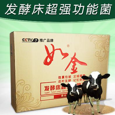 如金发酵床养牛