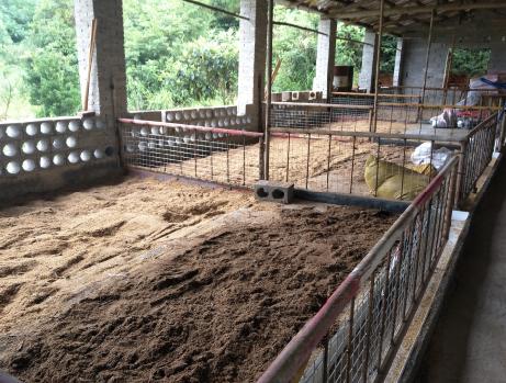 【成功案例】养猪发酵床的制作及维护保养